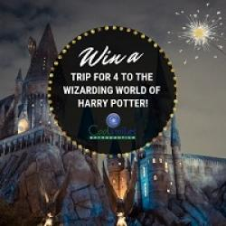 Wizarding World of Harry Potter Sweeps