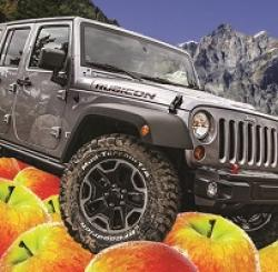 Jazzed Up Jeep Sweepstakes