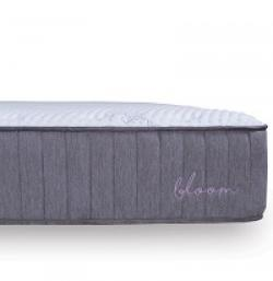 Bloom Mattress Giveaway