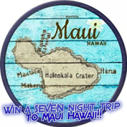 Rise2Maui Sweepstakes prize ilustration