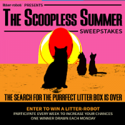 Scoopless Summer Sweepstakes prize ilustration