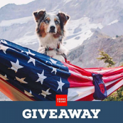 US Flag Hammock Sweepstakes prize ilustration
