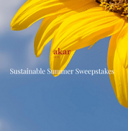 Sustainable Summer Sweepstakes prize ilustration