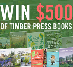 Timber Press $500 Sweepstakes prize ilustration